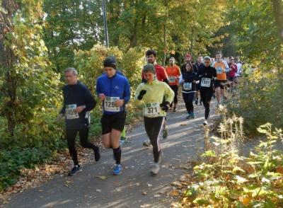 Foto des Albums: Müggelsee Halbmarathon 2018 (30.10.2018)