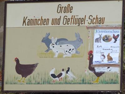 Fotoalbum Vereinsschau des Kleintierzuchtvereins D149 Kyritz