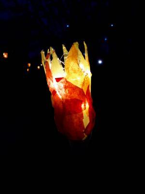 Fotoalbum Lichterfest