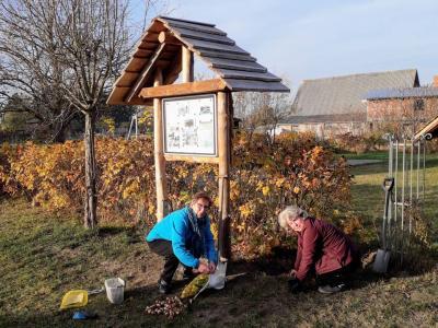 Fotoalbum Winterfest für Rosengarten in Zahren