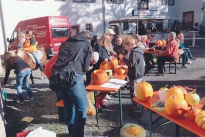 Fotoalbum Infotafeln am Schlossberg u.a. Aktivitäten des Vereins