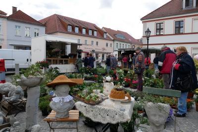 Foto des Albums: Anradeln und Frühjahrsmarkt 2019 (05.05.2019)