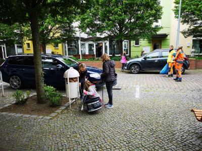 Fotoalbum Müllaktion der Pritzwalker Quandtschule