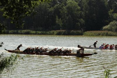 Fotoalbum 14. Drachenbootrennen auf dem Beetzer See