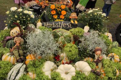 Fotoalbum Herbstfest in Flatow