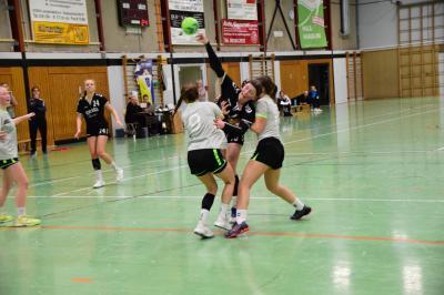 Fotoalbum Spiel wB gegen TG Kastel (17.11.)