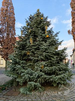 Fotoalbum Weihnachtsmarkt 2019 - Tag 3
