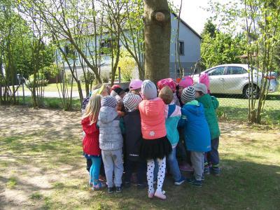 Fotoalbum Wildnisschule
