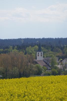 Fotoalbum Ortsteil Birkendorf