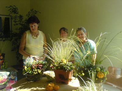 Foto des Albums: Floristik, Kulturhaus Kyritz (21.09.2006)