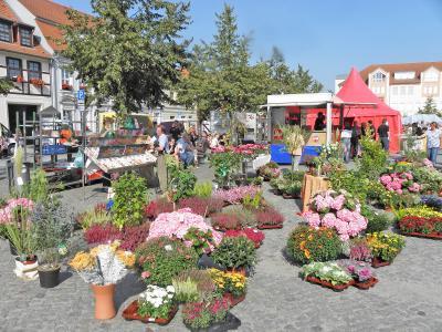 Foto des Albums: Beeskower Herbstmarkt - Tanzfest (Marktplatz Beeskow) (20.09.2009)