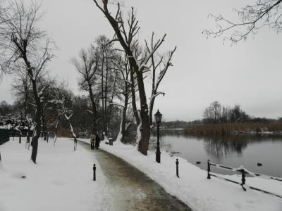 Foto des Albums: Winterliche Impressionen (03.01.2010)