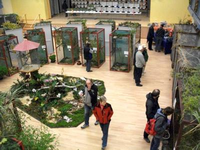 Foto des Albums: Vogelausstellung (22.10.2009)