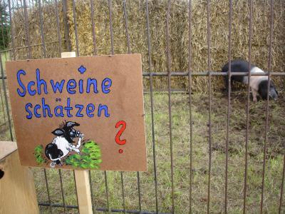 Fotoalbum 685 Jahre Schmolde (Festplatz)