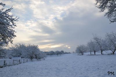 Fotoalbum Winter 2010