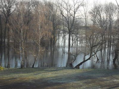 Fotoalbum Hochwasserstand am 10.01.2011