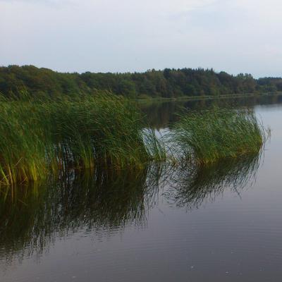 Fotoalbum Landschaftsbilder der Gemeinde