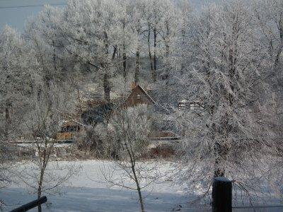 Fotoalbum Winter, Frost und  schöner Reif