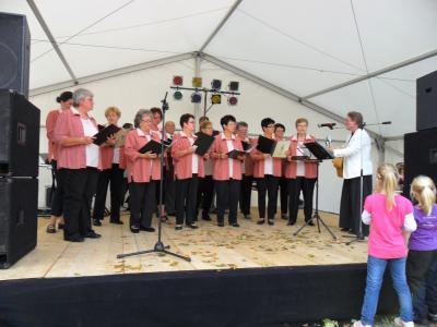 Fotoalbum Herbstfest mit Blutspende- und Typisierungsaktion in Nienburg (Saale)