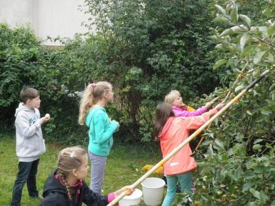 Fotoalbum Unser Apfelprojekt