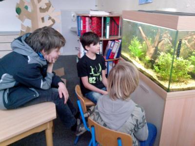 Fotoalbum Hort Räuberhöhle Rangsdorf - neues Aquarium