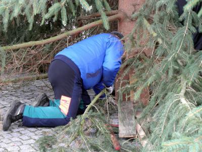 Foto des Albums: Weihnachtsbaum aufstellen 2015 (23.11.2015)