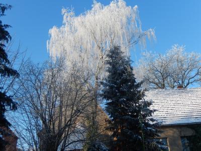 Fotoalbum Winter in der Gemeinde