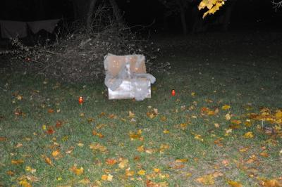 Foto des Albums: Halloween 2010 (29.10.2010)