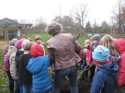Fotoalbum Baumpflanzaktion zur Schulhofgestaltung