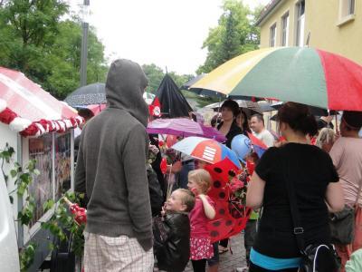 Fotoalbum Die AWO beim Brunnenfestumzug