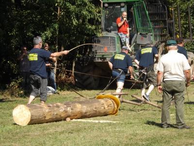 Fotoalbum Waldhoffest mit Baumstammziehen