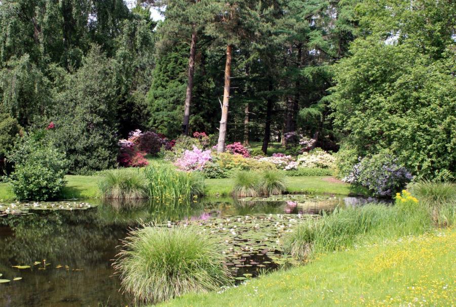 Garten Rostock gartenroute mecklenburg vorpommern botanischer garten uni rostock