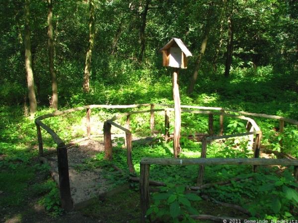 Foto der Galerie: Naturlehrpfad im Biederitzer Busch