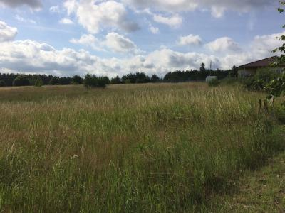 1-Wohngebiet Dolle Siedlung 27-30