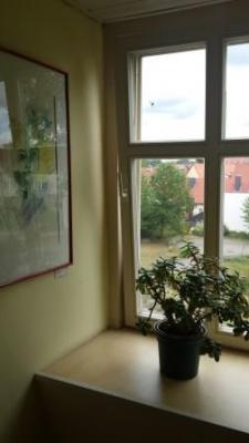 Blick vom Treppenhaus in den Weißen Garten