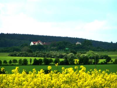 Blick auf die Konradsburg