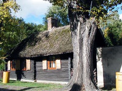Blockhaus mit Schilfdach in Cröchern