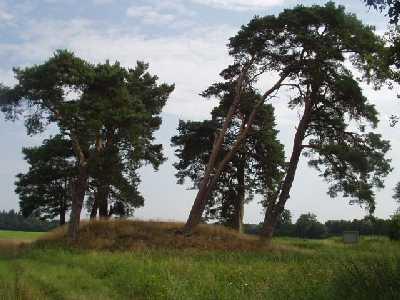 Das nördliche Hügelgrab