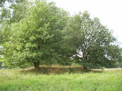 Das kleinere, südlich gelegene Hügelgrab