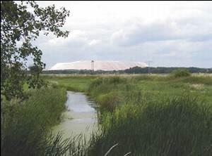alte Elbe mit Blick auf Kalimandscharo