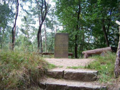 Gipfel des Heideberges (Sachsen)