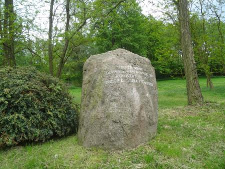 """Stein """"Ameisenhighway    Foto: Info Punkt Lebus"""