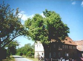 Die Buschschenkhäuser mit dem ehemaligen Gasthaus und dem Weg nach Herwigsdorf (schräg links)