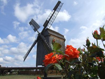 Bockwindmühle aus dem Jahr 1804