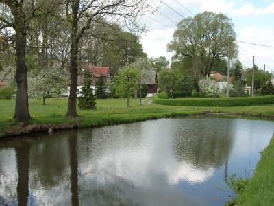 Dorfteich Stürza