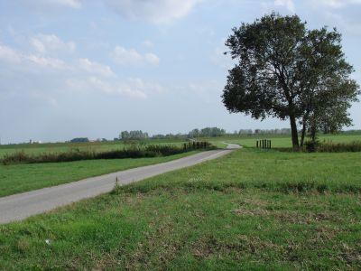 Radweg bei Brottewitz