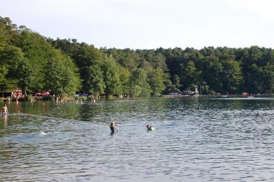 Stechlinsee 2008
