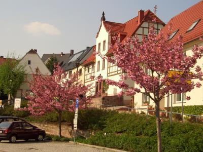 Kastanienplatz