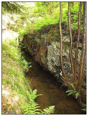 am Grabensystem oberhalb des Maliniusteiches