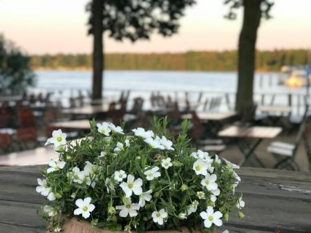 Abendstimmung im Biergarten am Peetzsee